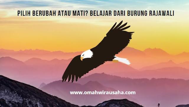terpuruk dan bangkit motivasi untuk bangkit dari keterpurukan hidup cerita orang yang bangkit dari keterpurukan cinta cara bangkit saat down apa yang menjadi tanda bahwa bangsa indonesia telah bangkit dari keterpurukan bangkit dari keterpurukan usaha