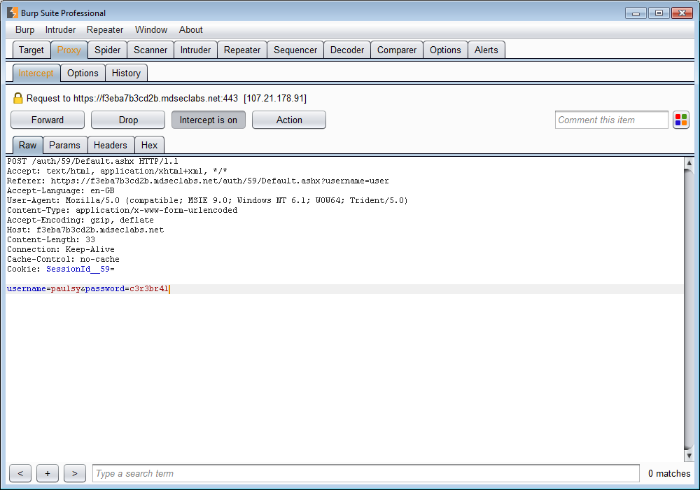 ToolsWatch org – The Hackers Arsenal Tools Portal » Burp Suite v1