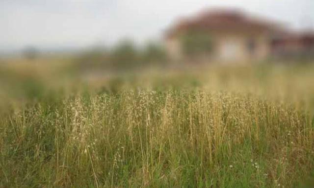 Ενημέρωση από το Δημο Ερμιονίδας για τον καθαρισμό οικοπέδων που βρίσκονται εντός οικισμών