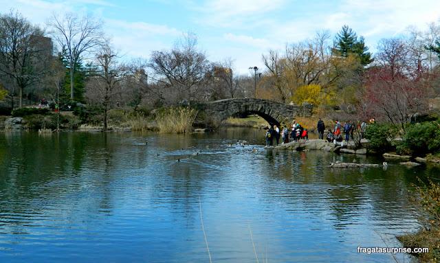 The Pond e a Gapstow Bridge no Central Park, Nova York