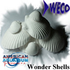 Wonder Shell, mineral cations, medicated