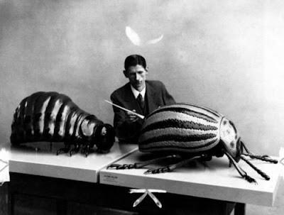 Franz Kafka preparando a Gregorio Samsa