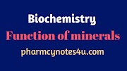 Function of a mineral in our Body
