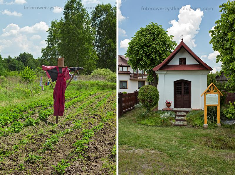 kapliczka w Ostrowach Tuszowskich