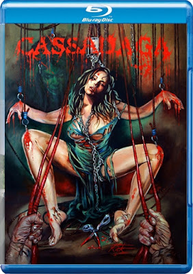 Cassadaga (2011) BluRay 720p 750Mb MKV Download