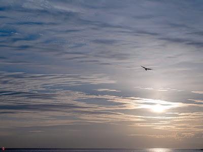 Evening sky: Yuigahama-beach