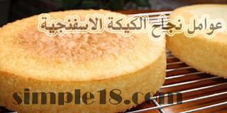 عوامل نجاح الكيكة الاسفنجية سالي فؤاد يوتيوب