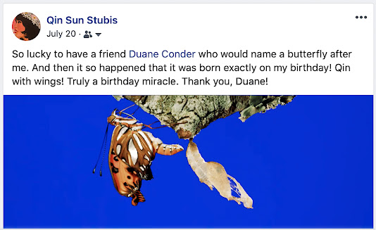 """""""So lucky to have a friend Duane Conder who would name a butterfly after me. And then it so happened that it was born exactly on my birthday! Qin with wings! Truly a birthday miracle. Thank you, Duane!"""""""