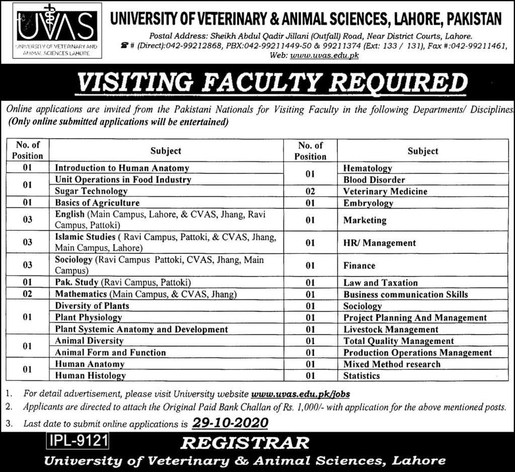 UVAS University Of Veterinary And Animal Sciences Job Advertisement in Pakistan - Apply Online - www.uvas.edu.pk Jobs 2021