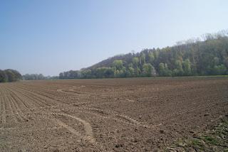 Eine große Ackerfläche erstreckt sich in die Landschaft.