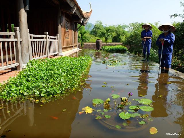 hotel emeralda reserve van long van gien vietnam lotus bassin jardiniere