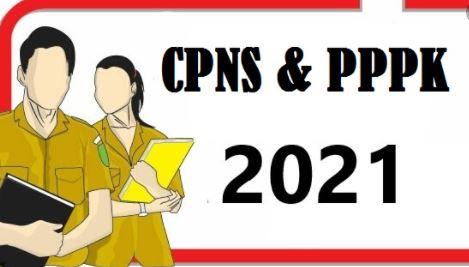 CPNS 2021 Labuhanbatu 2021