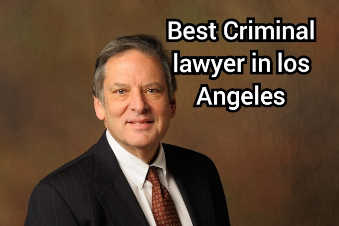 The Top 10 Best Criminal Lawyers in Los Angeles
