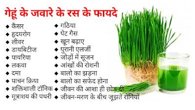 गेहूं के जवारे के फायदे (wheat grass benefits