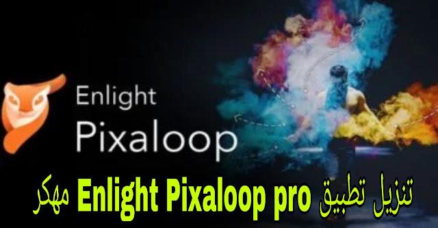Enlight Pixaloop MOD APK