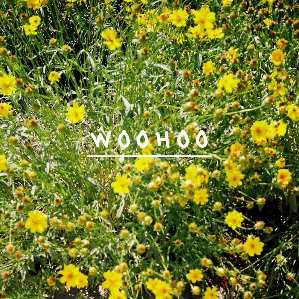 hwang puha – Woohoo – Single