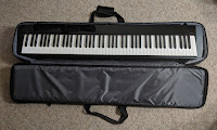 Casio PXS gig bag picture