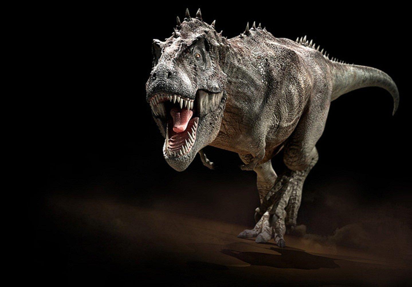 Descubrieron los restos de un dinosaurio carnívoro con dientes de tiburón y cola de lagarto: era el terror de los tiranosaurios