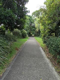 deserted pathways