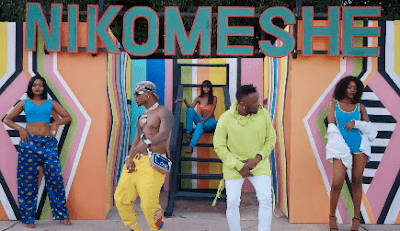 VIDEO| Dully sykes Ft. Harmonize ~ Nikomeshe|[official mp4 video]