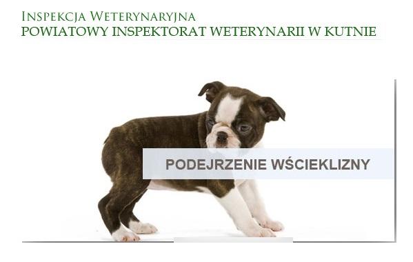 Mobbing Powiatowy Inspektorat Weterynarii Kutno