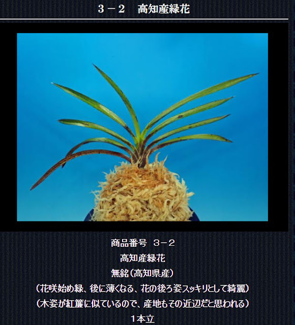 http://www.fuuran.jp/3-2.html