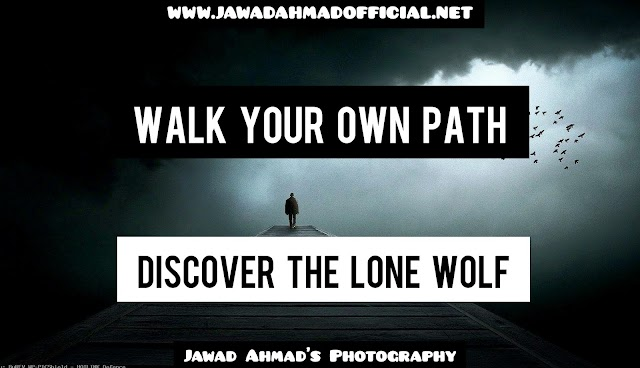 How to walk your own path | How to discover the lone wolf