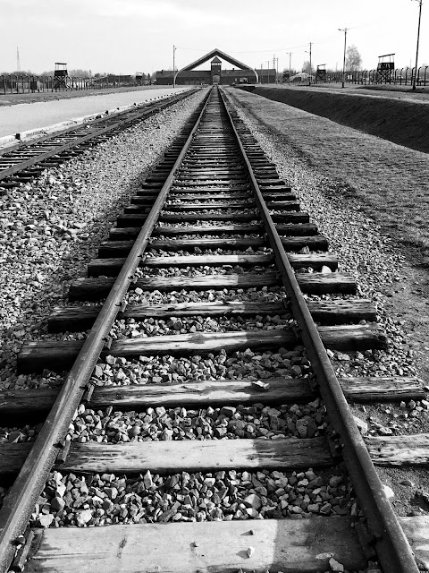 The tracks at Birkenau that lead straight to the gas chambers : My Visit To Auschwitz (and why you should visit too)