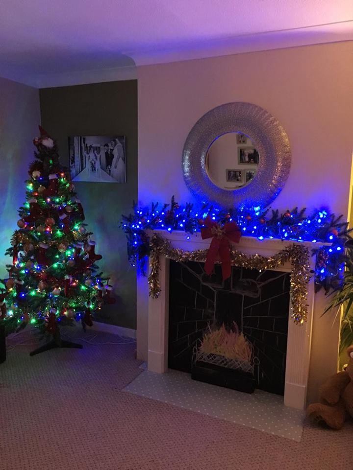 Homemade By Hail Christmas Tree Guard
