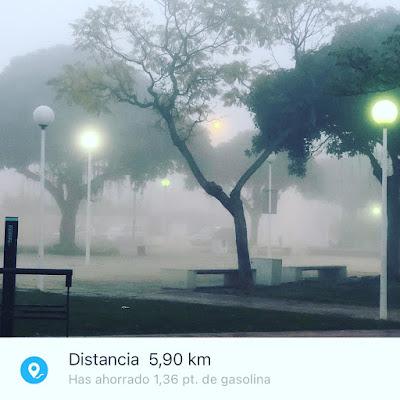 Amanecer-con-niebla