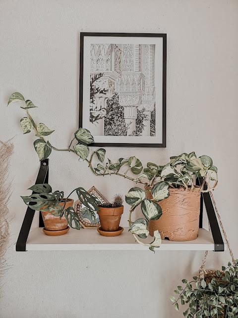 diy-pot-de-fleurs-terre-cuite-peinture