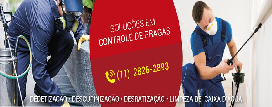 Dedetizadora de Cupins para Mercantil Paulista 250 Ltda