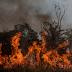Entenda os impactos das queimada na Amazônia
