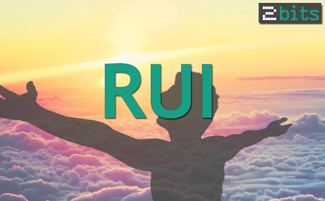 Rui 2Bits