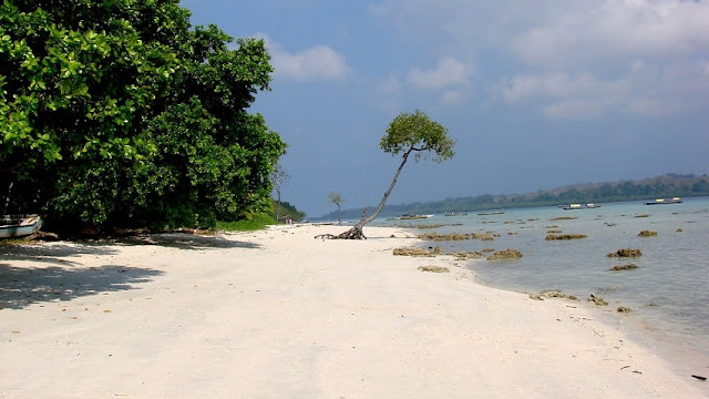 Havelock Island, Best Places to visit in Andaman & Nicobar