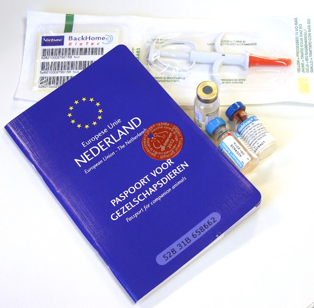 نيدرلاند .. اصدار جواز سفر للكلاب في هولندا أصبح أمراً إلزامياً