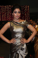 Shreya Saran in Skin Tight Golden Gown ~  Exclusive 043.JPG