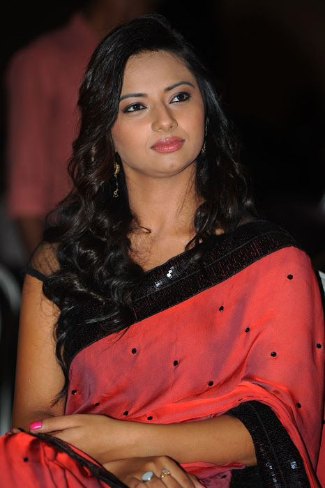 isha chawla at poola rangadu audio launch, isha chawla saree actress pics