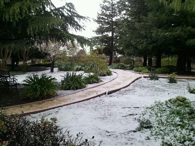 Snow in the Bay Area in April!