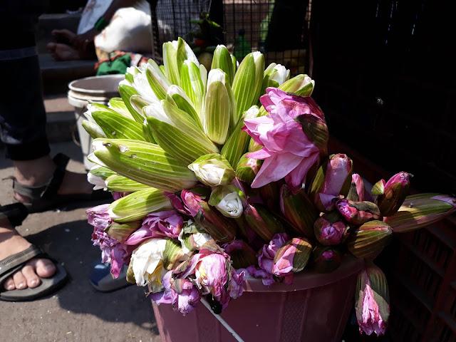 धार्मिक कार्यासाठी कमळाचे अनन्य साधारण महत्व आहे. नवरात्रीच्या दिवसात कमळ पुष्पला मोठी मागणी आहे. सध्या कमळ पुष्प हे 10 रुपयांना विकले जात असून नवरात्रीमध्ये हे फुल 15 ते 20 रुपयांना विकले जाते. मुबई ठाण्यात नवीमुंबई आणि गुजरात राज्यातून ही फुले विक्रीसाठी मोठ्या प्रमाणावर येतात.