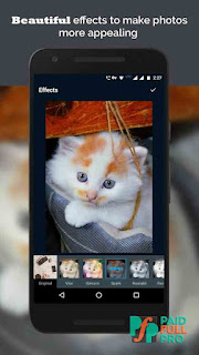 Photo Scan Photo Editor Quisquee Pro APK