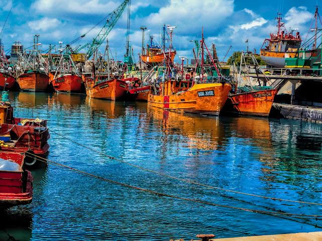 Lanchas pesqueras en el Pto .de Mar del Plata