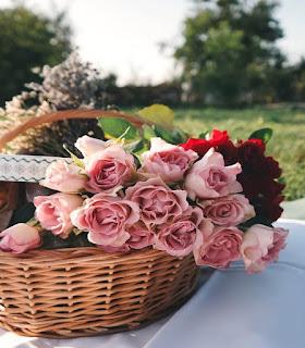 اجمل واشيك انواع الورود بويكيهات ورود رائعة جداً
