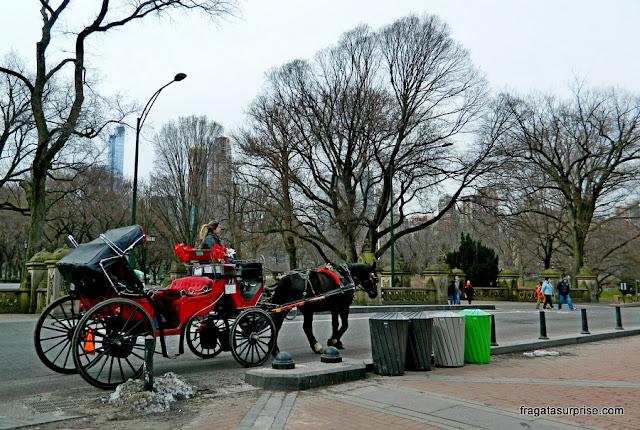Carruagem no Central Park, Nova York