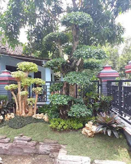 kali ini aku akan membahas wacana desain taman rumah yang minimalis dan juga kece Desain Taman Rumah Yang Minimalis Dan Kece