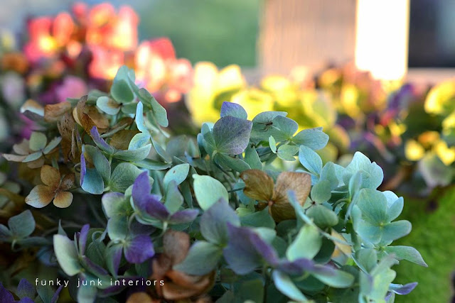 How to dry hydrangeas for wilt-free petals! Includes other ideas on what to make and how to prune for the most blooms.