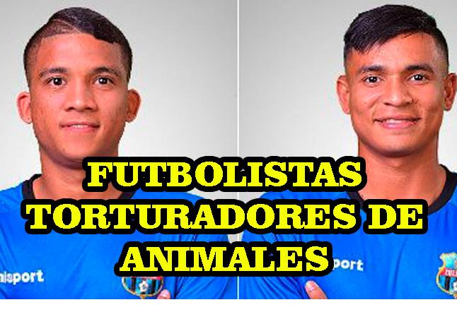 Dos jugadores profesionales de fútbol botados del Zulia por Maltrato Animal