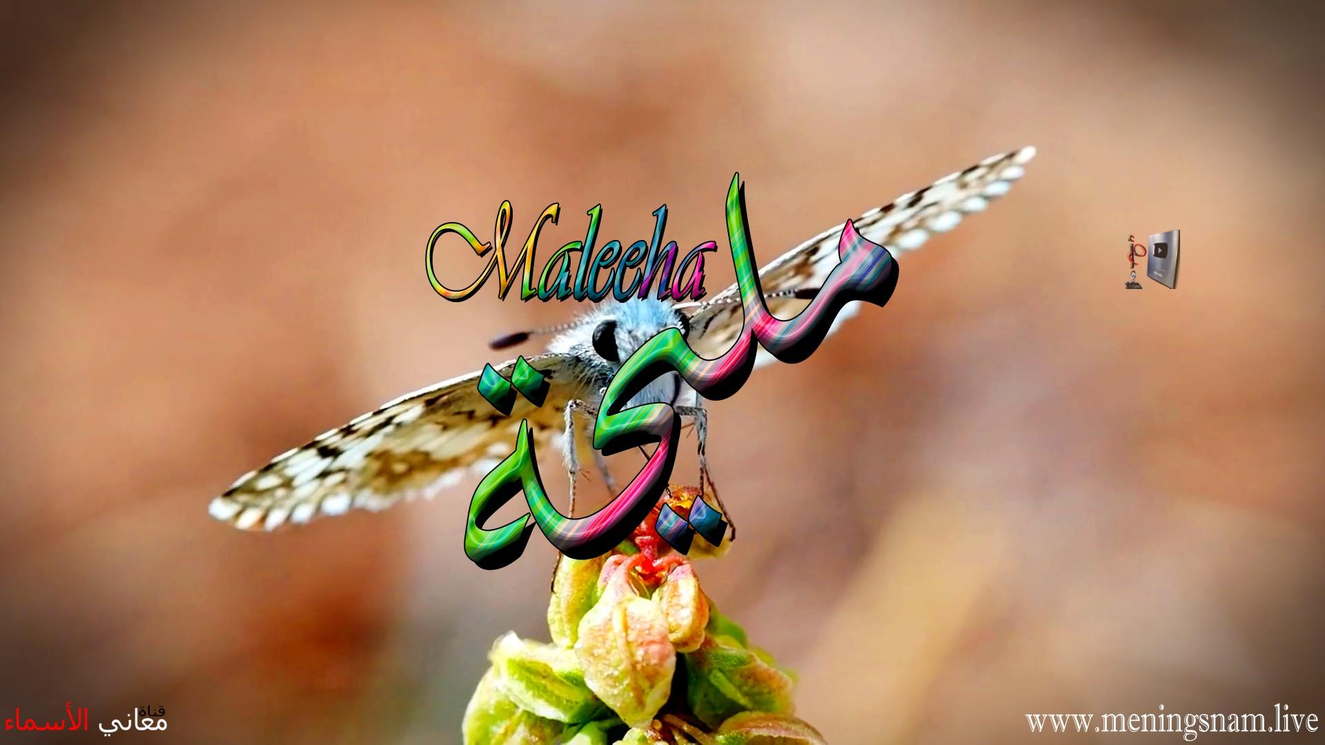 معنى اسم مليحة وصفات حاملة هذا الاسم Maleeha