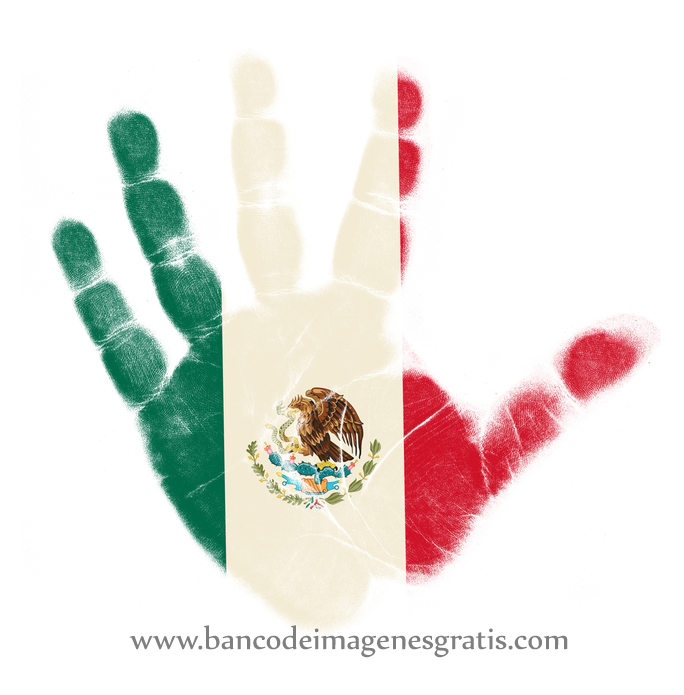 dibujos para colorear patrios mexicanos apexwallpapers com