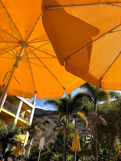 Umbrellas at Cordial Mogan Playa Hotel